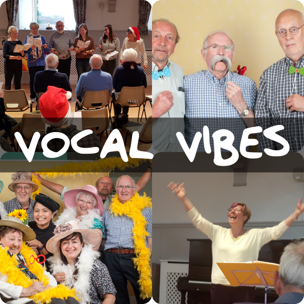 Vocal Vibes Singing Group